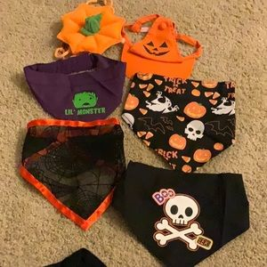 Assorted Other - Bundle of Halloween Scarves and Hats for Dogs!